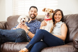 Couple sitting on couch with dogs