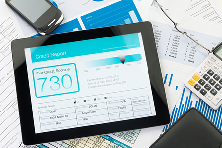 Real Estate Credit Score