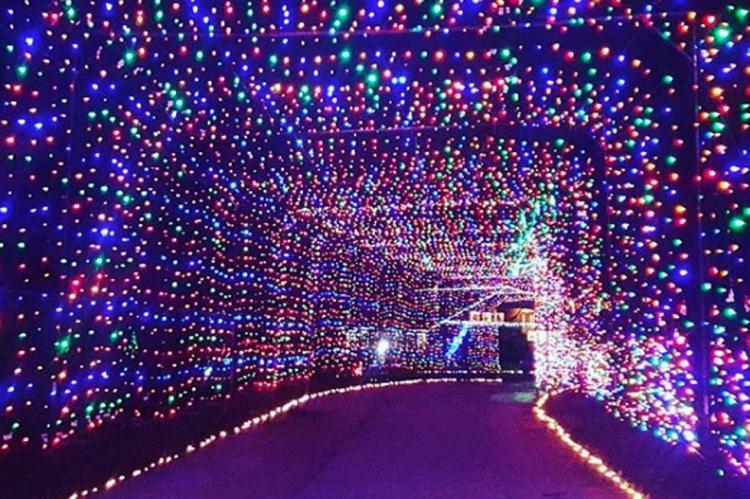 gift of lights