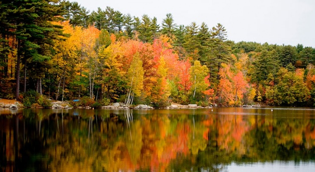 Explore New Hampshire Communities
